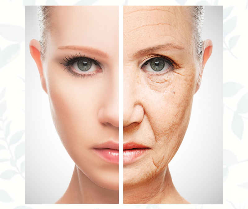 What REALLY Causes Aging
